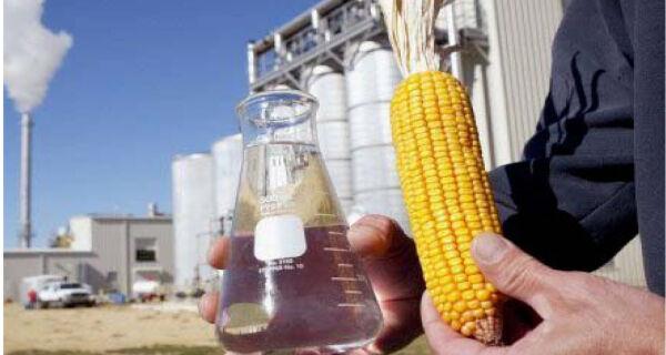 Usina inicia a produção de etanol utilizando milho em MT