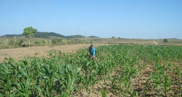 Incra investe mais de R$ 12 milhões para qualificar a produção de 62 assentamentos