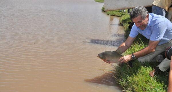 Lago do parque começa a receber 3.500 kg de peixe