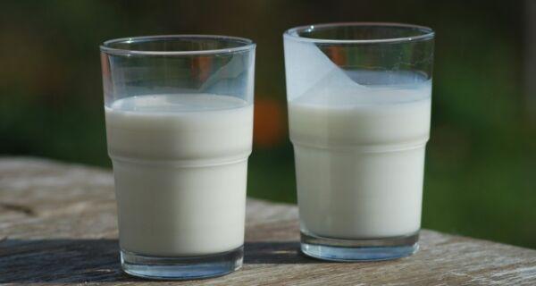 Soro de leite é foco de pesquisa para alimentos funcionais