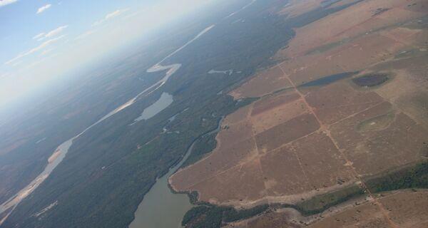 Código Florestal: Desmentindo as ONGs ambientalistas