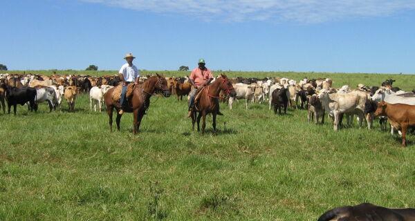 Levantamento de preços de insumos será realizado em 22 municípios de Mato Grosso do Sul