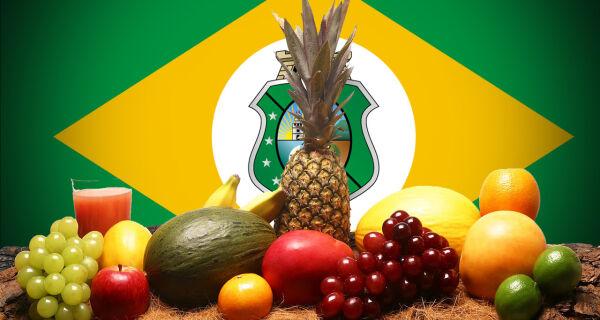 Ceará é o 2º estado do País em exportação de frutas