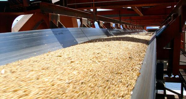 Governo garante que não faltará farelo de soja no Brasil