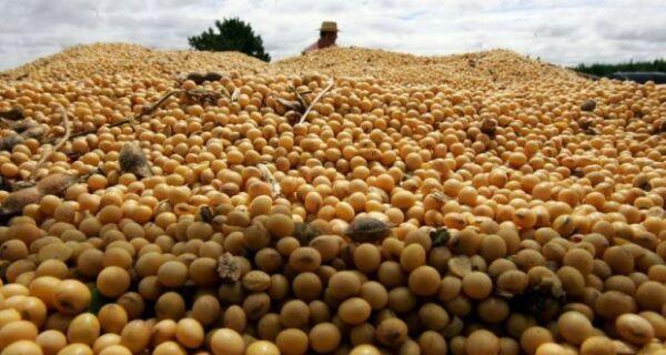 Governo de MS quer autorização para importar 300 mil t de soja