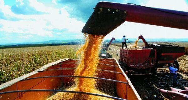 Consultoria estima alta de 10% na produção brasileira de grãos