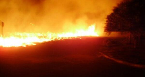 Fogo destruiu 100 mil ha no Pantanal de Corumbá
