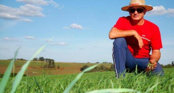 Pesquisadores desenvolvem ferramenta para monitorar produtividade agrícola