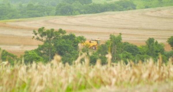 Proibição do Cultivo de Soja (Vazio Sanitário) se encerrou em MS, SP, PR e MT