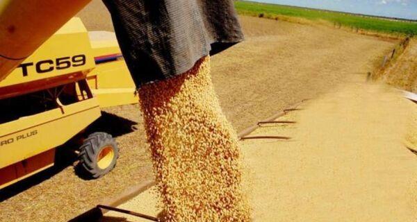 Produção de grãos crescerá até 10% na safra 2012/2013, informa Conab