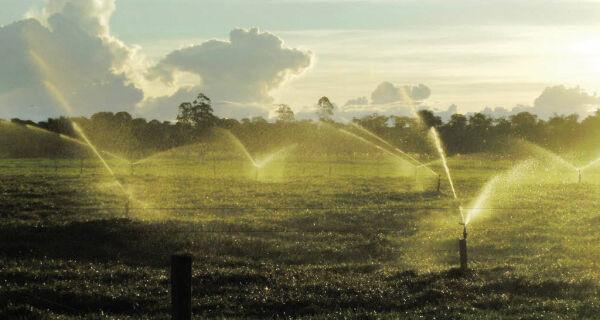 MAPA incentiva financiamento para irrigação buscando maior produtividade