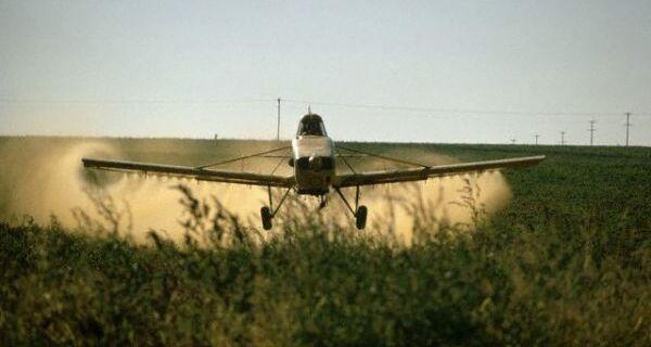 Ministério da Agricultura autoriza pulverização aérea na safra 2012/13