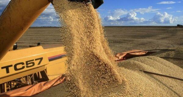 Brasil deve responder por 44% das exportações mundiais de soja em grão em dez anos