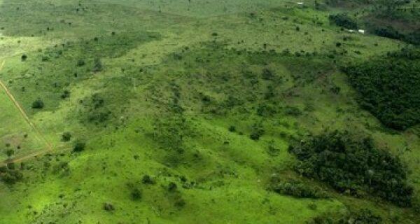 Regulamentação do Código Florestal é adiada devido a protestos em todo o país