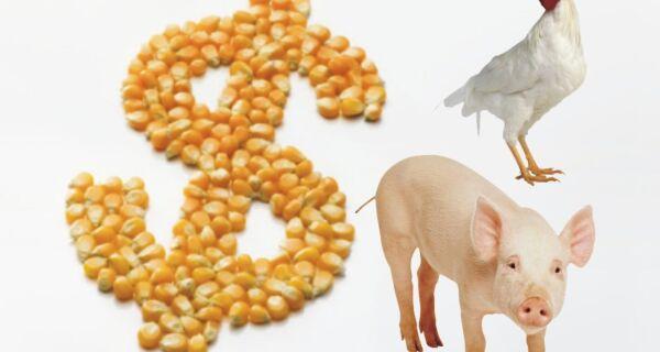 Ministro da Agricultura reconhece necessidade de reduzir custo de produção no Brasil
