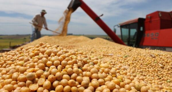 Valor da produção é R$ 508,4 bilhões em 2016; Mato Grosso é líder nacional