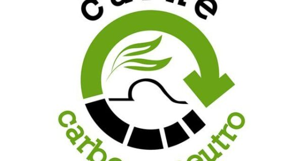 Pesquisa desenvolve conceito Carne Carbono Neutro para produção bovina