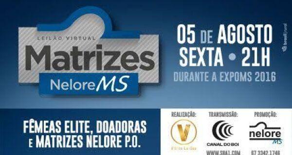 Exponelore MS promove Leilão Matrizes MS no dia 5 de agosto
