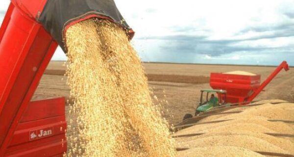 Em agosto, IBGE prevê safra de grãos 11,1% menor que em 2015