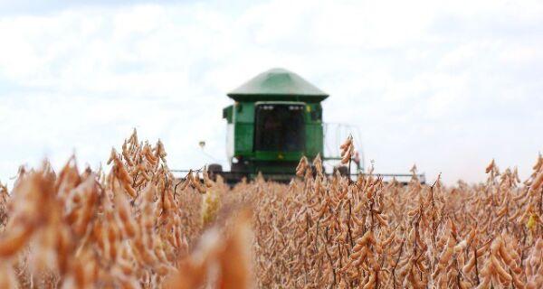 Pela primeira vez Mato Grosso do Sul sedia maior evento de colheita do País