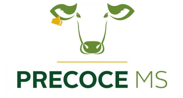 Governo lança 'Precoce MS' buscando excelência na produção de carne e redução do efeito estufa