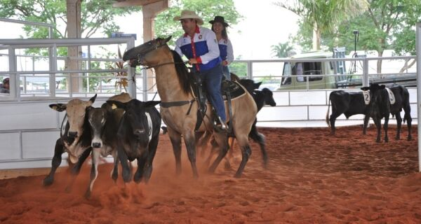 4º Campeonato de Ranch Sorting de MS acontece amanhã