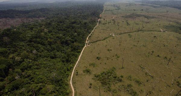 Licenciamento ambiental pode ficar mais flexível para o agronegócio