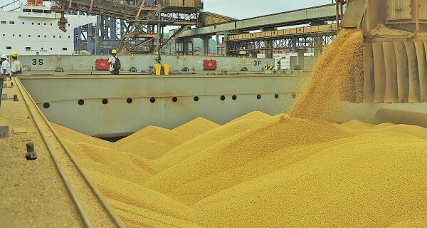 MS: Exportações de soja deste ano já superam em 21% o volume embarcado em 2016