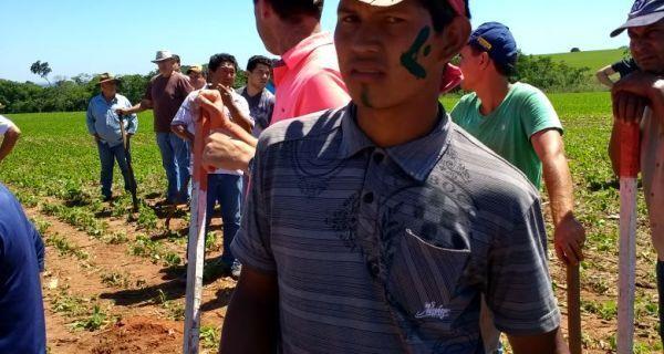 Indígenas invadem fazenda em Guaíra/PR e produtores reagem