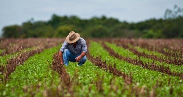 Agro fechou mais de 3,5 mil vagas formais em outubro