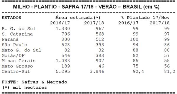 Plantio do milho chegou a 81,2% da área até o dia 17