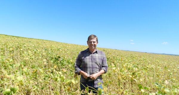Cultivar da Embrapa amplia potencial de rendimentos da soja no RS
