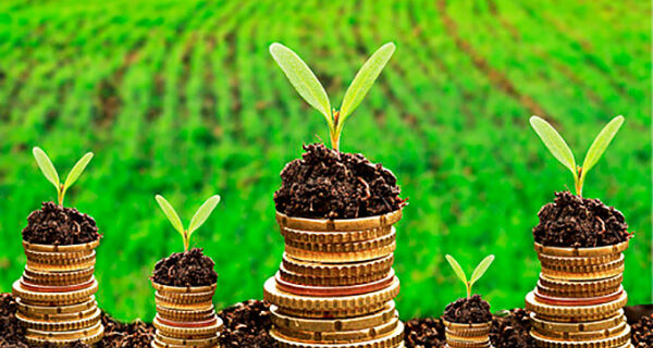 Modelo de crédito rural está com os dias contados, diz diretor do Banco Central