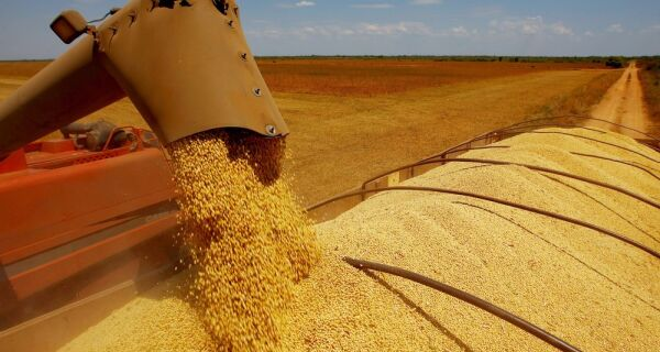 IBGE prevê safra de grãos 9,2% menor em 2018