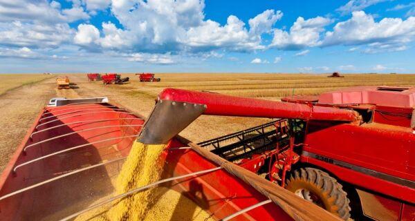 Começa a colheita da soja em Mato Grosso do Sul