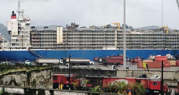 Liminar autoriza partida de navio com 27 mil bois em Santos