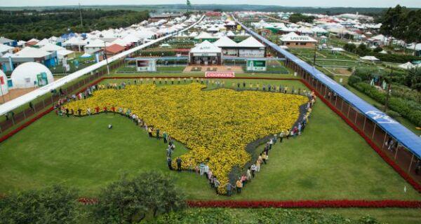 Show Rural Coopavel deve girar R$ 1,5 bilhão em negócios até o dia 9