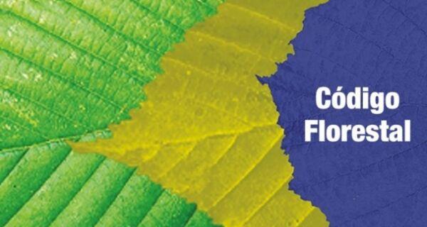 Código Florestal volta a ser discutido nesta quarta no STF