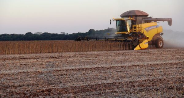 Colheita da soja chega a 75% da área de Mato Grosso do Sul com boa produtividade