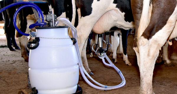 Preço do leite registra recuperação em MS