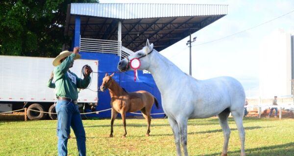 Cavalo Pantaneiro terá programação exclusiva na 80ª Expogrande