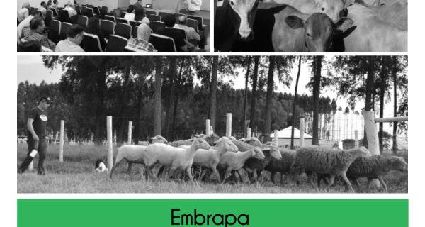 Embrapa Gado de Corte promove ciclo de palestras hoje na Expogrande