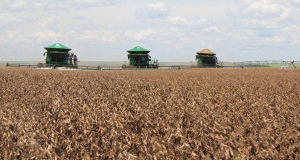 Agropecuária de MS e MT mantém força e segura crescimento do PIB