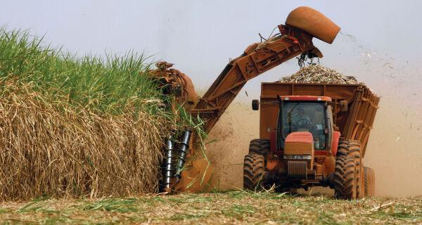 Última estimativa da safra de cana fecha em 633 milhões de toneladas