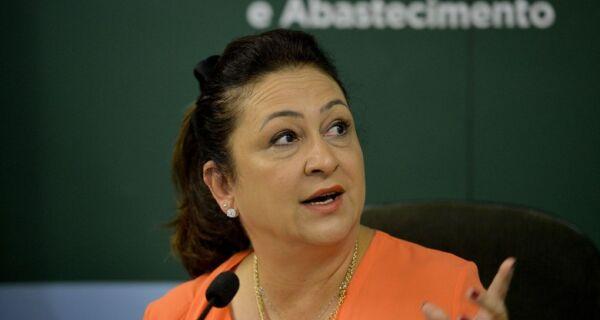 Projeto sobre seguro rural de Kátia Abreu é aprovado por Comissão do Senado