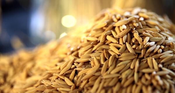 Novo leilão da Conab para apoio à comercialização de arroz será dia 3 de maio