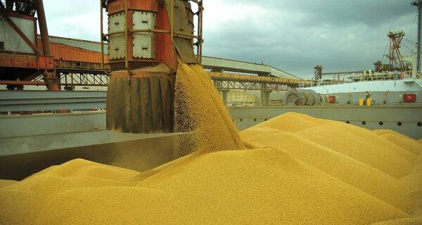 Brasil deve atingir novo recorde com exportação de soja