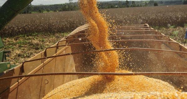 Embarques de milho em abril recuam 26% na comparação anual
