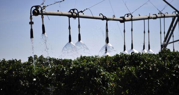 Fabricantes apostam em equipamentos de irrigação sustentáveis