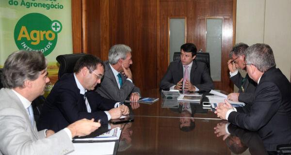 Novacki e embaixador Cravinho tratam sobre maior aproximação entre Brasil e UE